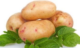 5 Фактів про картоплю або що нам потрібно знати про крохмалі