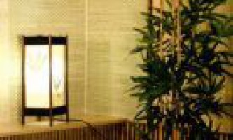 Бамбук і очерет в якості стінового покриття. Як поклеїти бамбукові шпалери