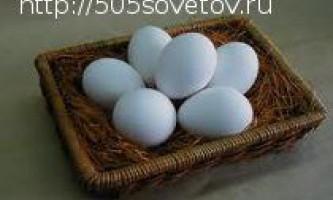 Чим корисні курячі яйця?