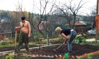Що робити в травні в саду і на городі