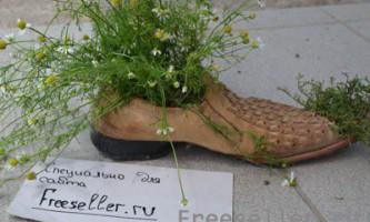 Квітковий горщик зі старих черевиків