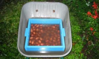 Дерев`яний ящик з сітчастим дном для миття овочів