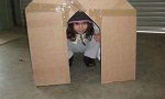 Будиночок з картонної коробки
