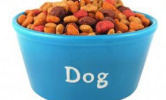 Гормони для собак і їх користь