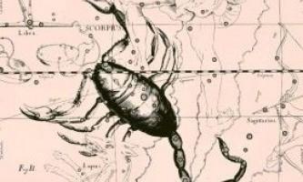 Гороскоп на 2016 рік для скорпіона