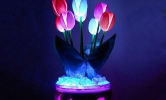 Горщик з світяться квітами