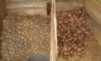 Зберігання картоплі в погребі