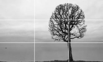 Як навчитися фотографувати: поради початківцям