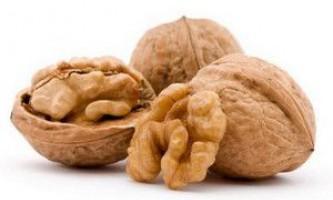Як посадити волоський горіх з горіха і саджанця?
