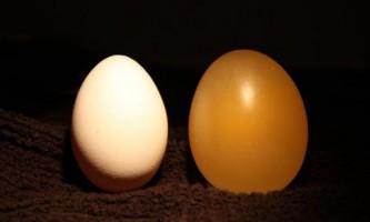 Як зробити прозоре яйце