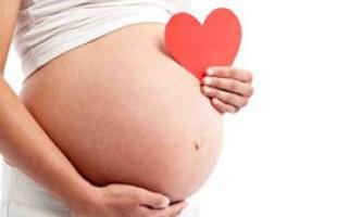 Як завагітніти за допомогою стимуляції овуляції народними засобами