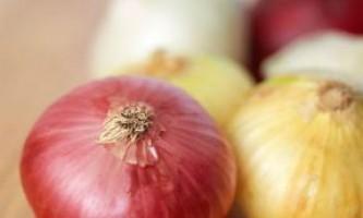 Яке насіння цибулі вибрати? Кращі сорти цибулі