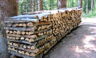 Якими дровами краще топити піч у хаті