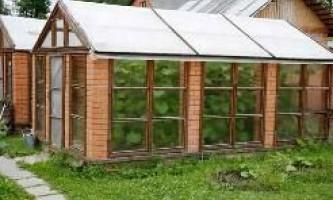Яку вибрати теплицю для садового ділянки