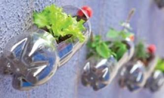 Кашпо з пластикової пляшки своїми руками - фото, як зробити