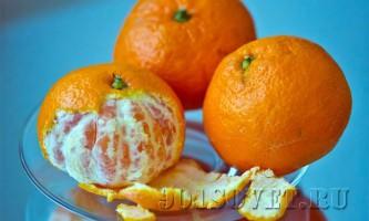 Шкірка мандарина