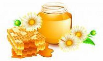 Мед. Лікувальні властивості меду