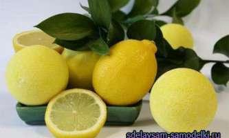 Незамінний помічник лимон
