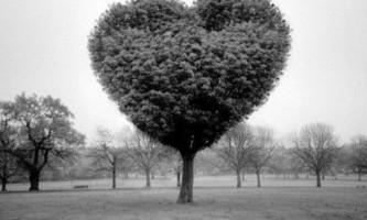 Чи потрібна молитва про взаємну любов?