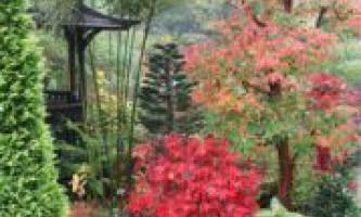 Жовтень. Календар садівника