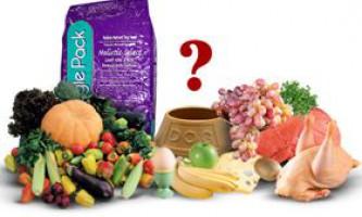 Харчова цінність сухих кормів для собак