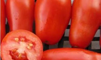 Детальний опис сорту томату французький гроздевой