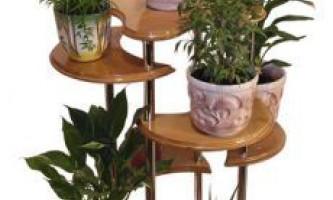 Підставки для кімнатних рослин