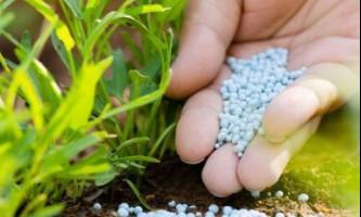 Переваги і недоліки використання мінеральних добрив