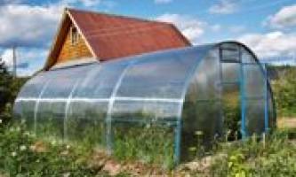 Переваги теплиць із стільникового полікарбонату