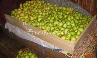 Розбірний напівящиків для зберігання яблук