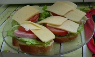 Рецепти приготування бутербродів в мікрохвильовці