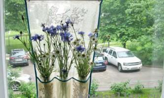Саморобна повітряна ваза для квітів