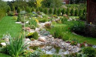 Створення ландшафтного дизайну на садовій ділянці