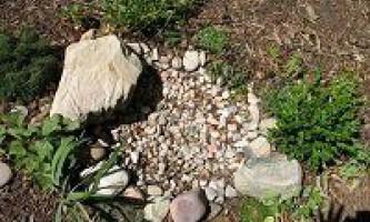 Сухий ставок з каменів