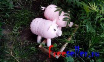 Свині з пластикових пляшок