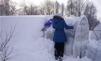 Теплиця з полікарбонату - догляд взимку