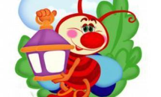 Загадки про комах для дітей 5-7 років з відповідями