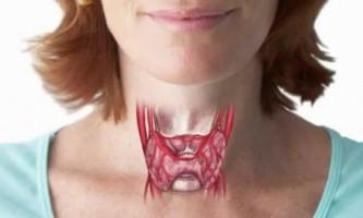Чи здорова ваша щитовидна залоза?